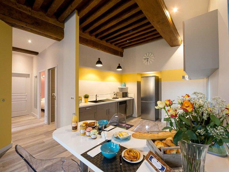 NEW - Luxeux  appartement 4* avec ascenseur centre historique - BEAUNE ALLEREY, alquiler de vacaciones en Beaune