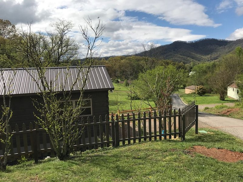 Adorable Cabin with big mountain views. 12 Minutes to DT Asheville, holiday rental in Candler