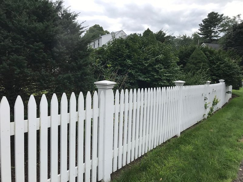 Side Yard Screening and fencing around perimeter of yard