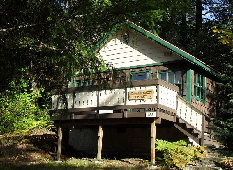 Beautiful Northwest Lodging - Mountainside Chalet 'Tiny House' - Honeymoon for 2, holiday rental in Packwood