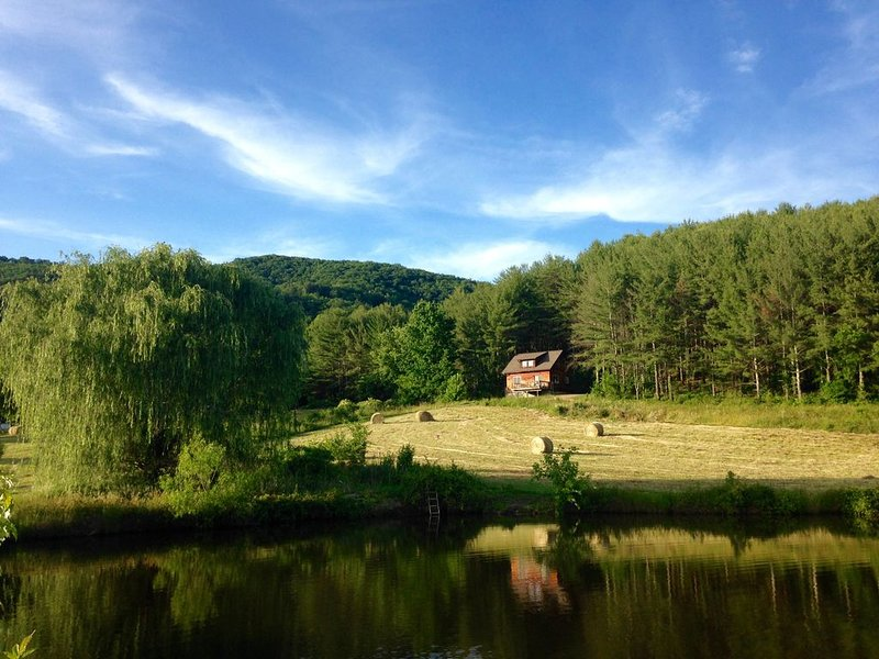 Your view from the deck is our farm pond, hayfields and sunsets