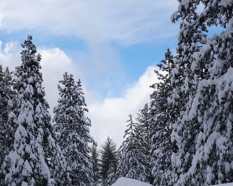 El invierno en Yosemite a menudo está lleno de nieve y sol
