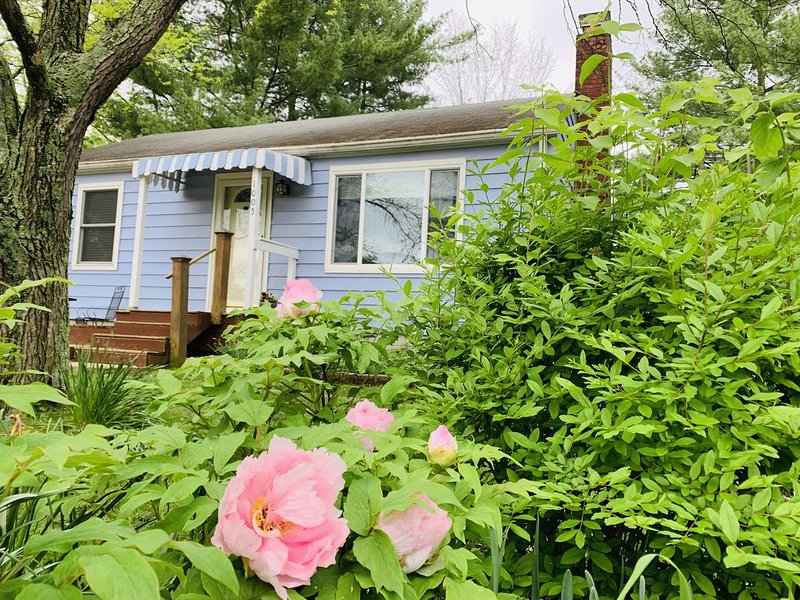 Charming Home .4 miles from IU, Walk EVERYWHERE, location de vacances à Bloomington
