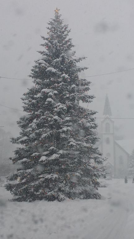 Harbor Springs Christmas Tree in front of the church...downtown.