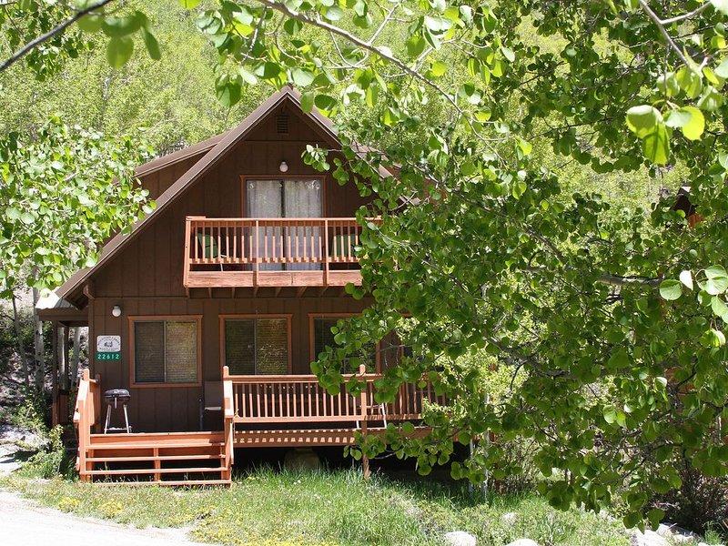 Clean, comfortable Cabin close to Monarch!, alquiler de vacaciones en Pitkin