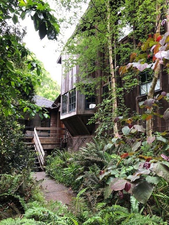 Leafy fairytale entrance
