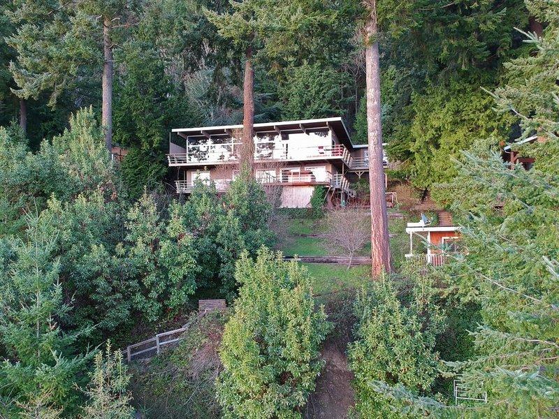 Casa com acesso a água + vista aninhada na floresta