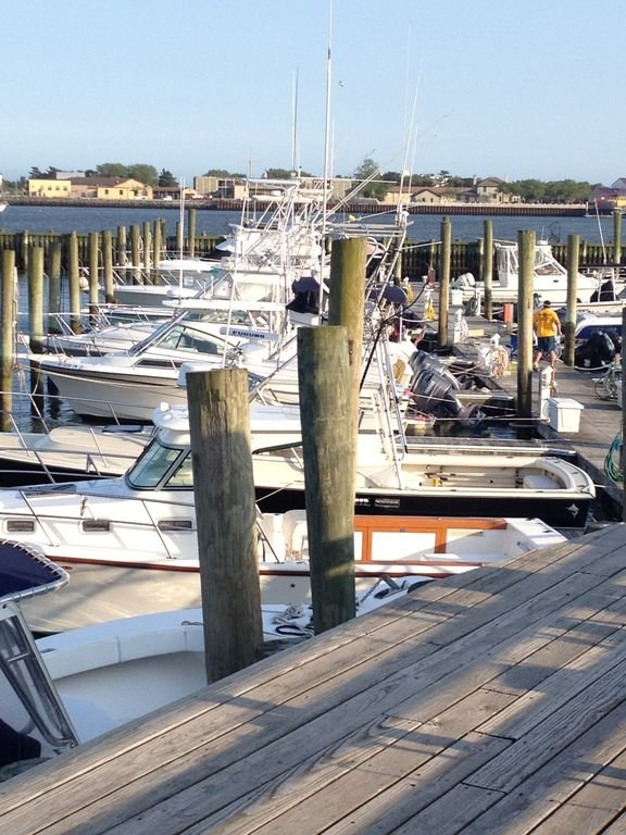 Cape May Harbor. Boat rentals available and fishing excursions.