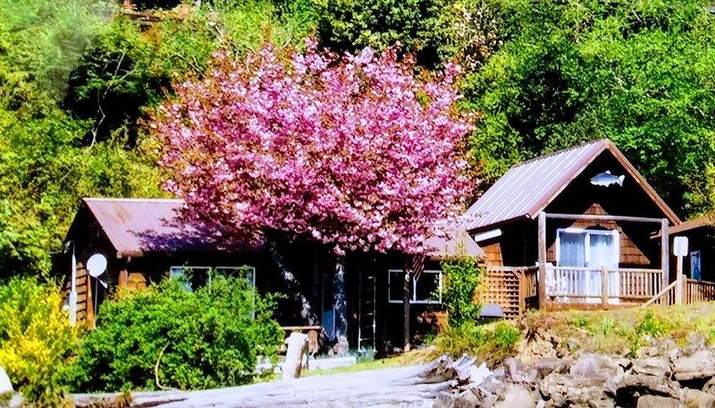 Hood Canal 2 B/R Waterfront Cabin.  Sleeps 6., alquiler de vacaciones en Lilliwaup