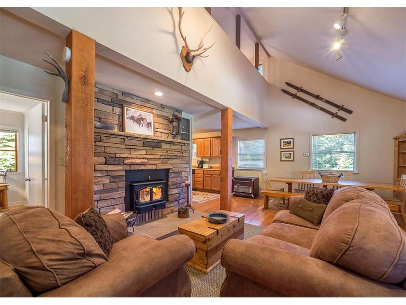 Pet Friendly Mountain Retreat with HOT TUB!! Near Breck- Lincoln Falls, holiday rental in Alma
