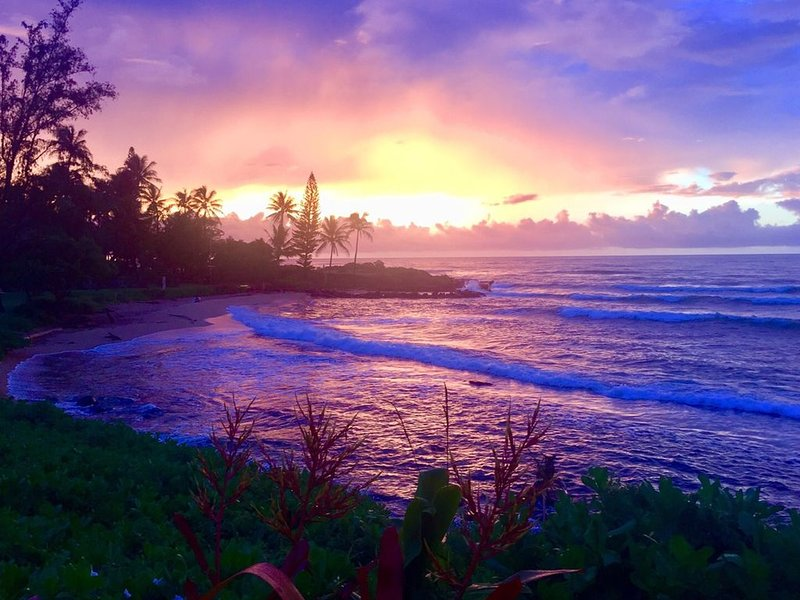 Oceanfront condo w/ private lanai, amazing views & shared pool - steps to beach!, vacation rental in Kapaa