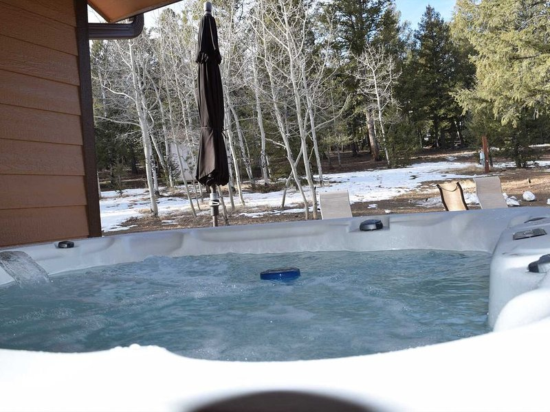Stay warm in the hot tub while the rest of the family hangs out by the fire.
