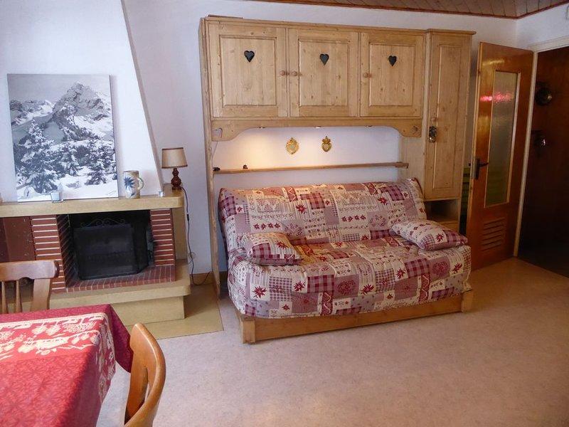 Grand studio avec terrasse plein sud sans vis à vis dans le village, au calme, holiday rental in La Clusaz