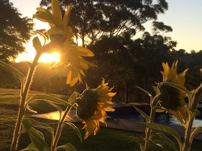 La Provence Cottage near Coolangatta and Byron Bay, holiday rental in Mount Warning