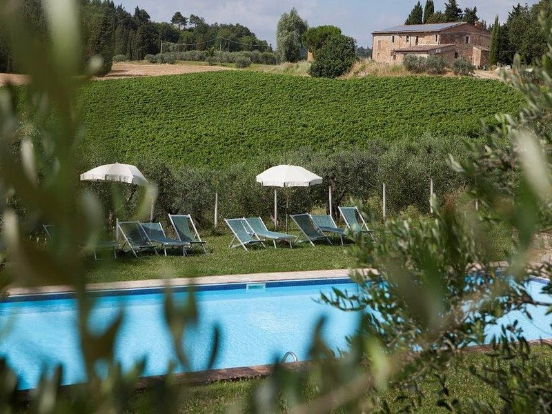Weingut, Ferienanlage, Swimming Pool im Herzens der Toskana. il Tetto, casa vacanza a San Vincenzo a Torri