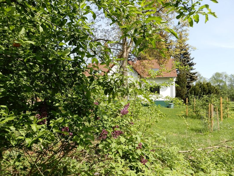 "FeWo ""orchard-The orchard"" in spring - not just an idyll for bees!"