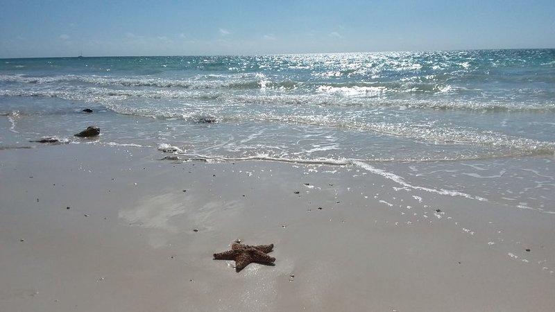 Taino Beach liegt 5 min. zu Fuß von der Villa.