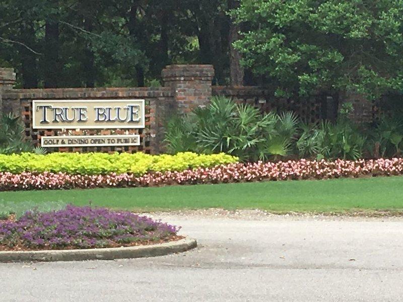 True Blue 2BR 2BA Condo - Stunning View, vacation rental in Litchfield Beach
