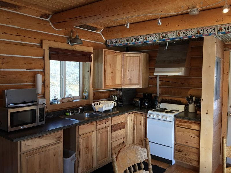 Kök i stuga nr 1, elektrisk spisbländare, brödrost, kaffe, mikrovågsugn, Bose.