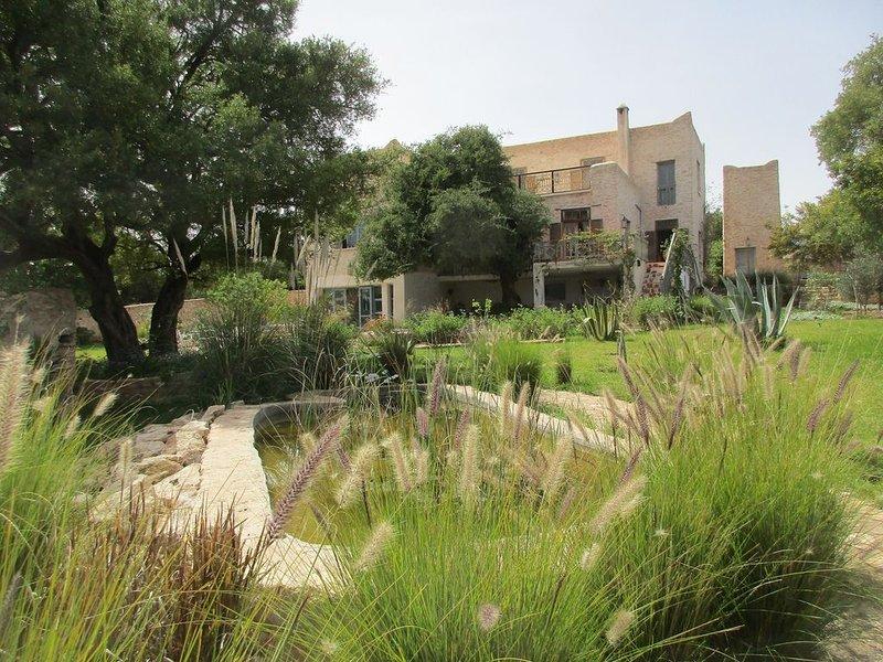 le jardin et son bassin