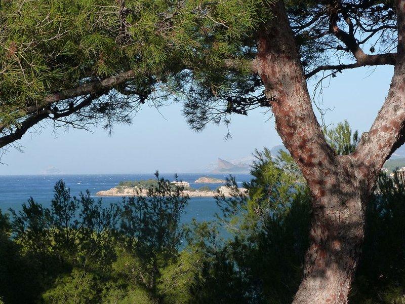 Vue pinède et mer pour cet agréable T3 très calme à 200 m de la plage, location de vacances à Sanary-sur-Mer