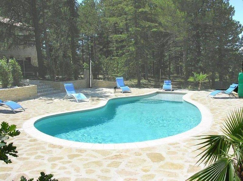 Villa avec piscine privée chauffée, vacation rental in Vaucluse