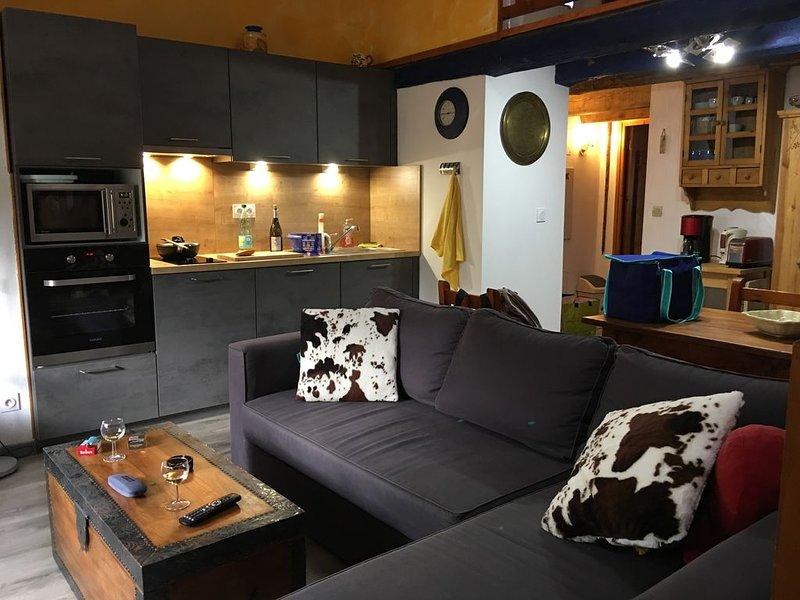Lumineux appartement traversant  au centre ville piétonnier pour 6 personnes, location de vacances à Jausiers