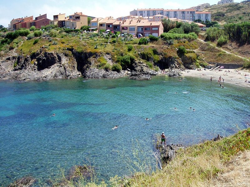 Collioure  F2 (4 Pers) Grnd standing. Pieds dns eau Désinfecté avc Javel, alcool, holiday rental in Pyrenees-Orientales