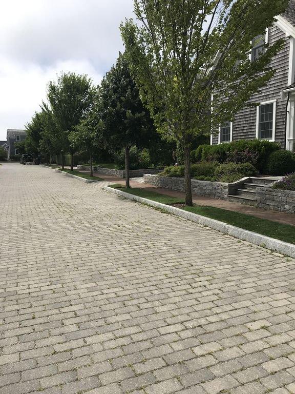 Une rue pavée bordée d'arbres se termine en cul-de-sac. Parfait pour les enfants.