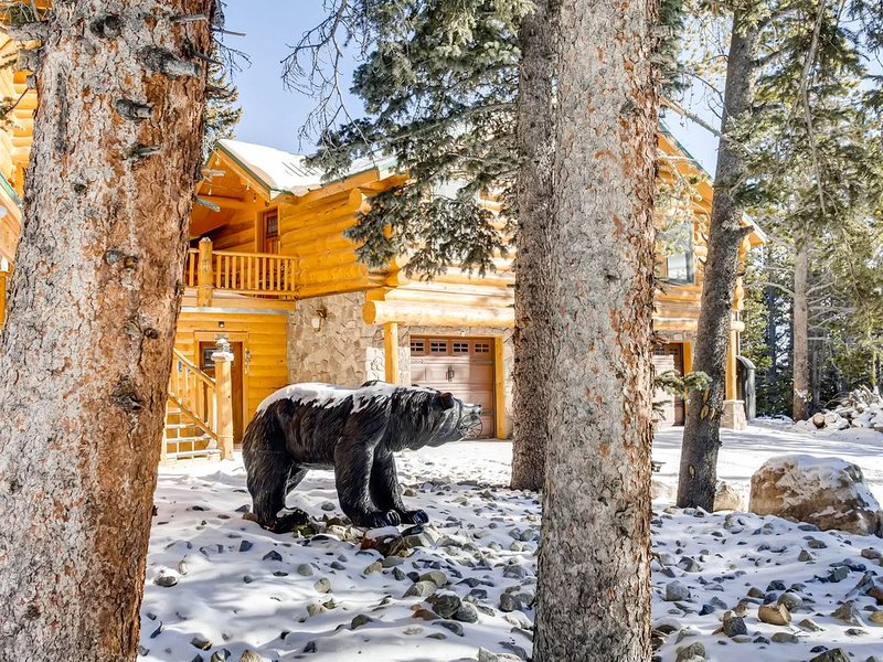 The Lodge is a Cozy Log Cabin on 100+ Secluded Acres, holiday rental in Alma