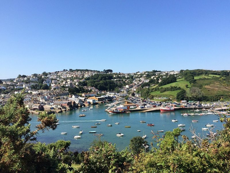 Salcombe Cottage tucked away off Island St., short, level walk to all amenities., vacation rental in Salcombe
