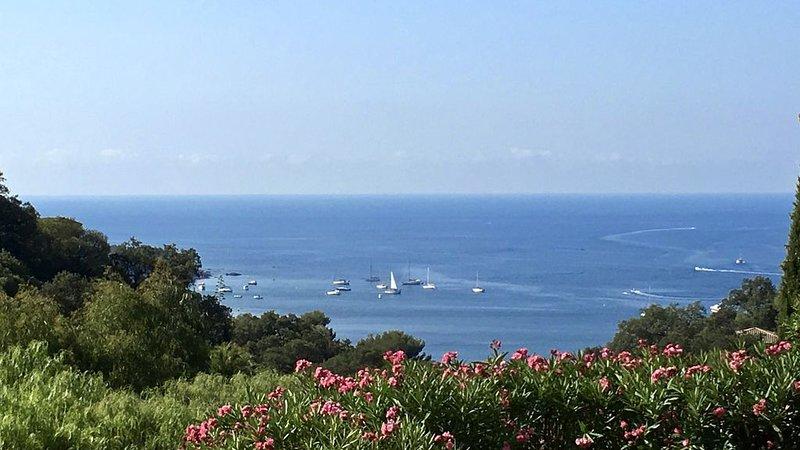 Facing the Mediterranean