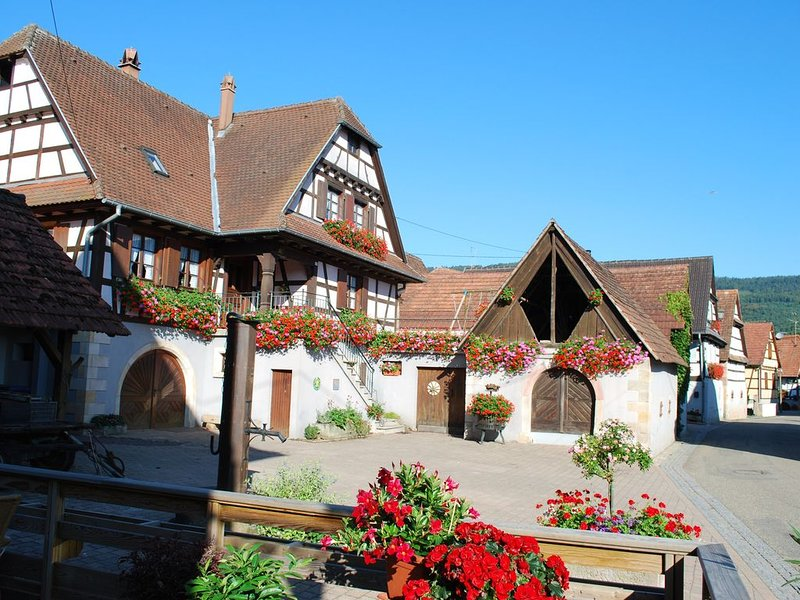 Gîte Rural Vignoble de Cléebourg, holiday rental in Schweigen-Rechtenbach