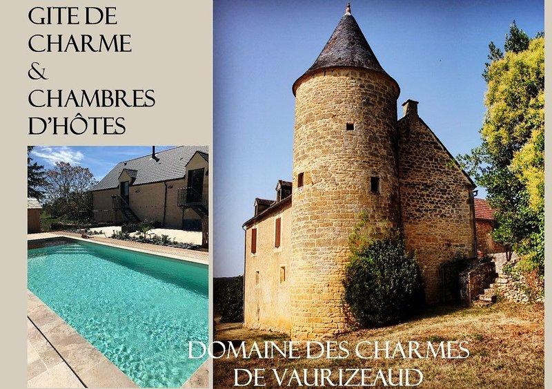 Gîte & Chambres d'Hôtes Les Charmes de Vaurizeaud, holiday rental in Sainte Nathalene