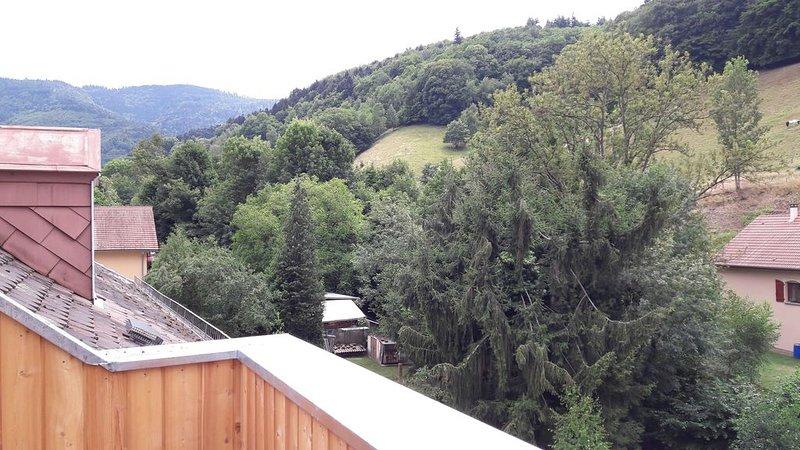 L'Ecole - Gîte avec terrasse en bois et vue, holiday rental in Lusse