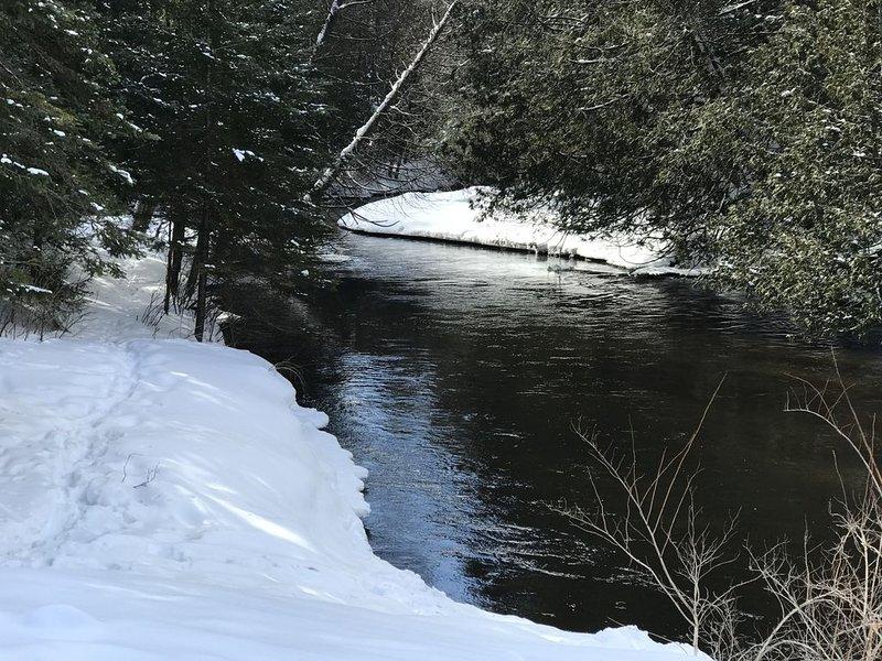 Kajak of buis de Sturgeon River ligt op slechts 1,5 km van onze deur.