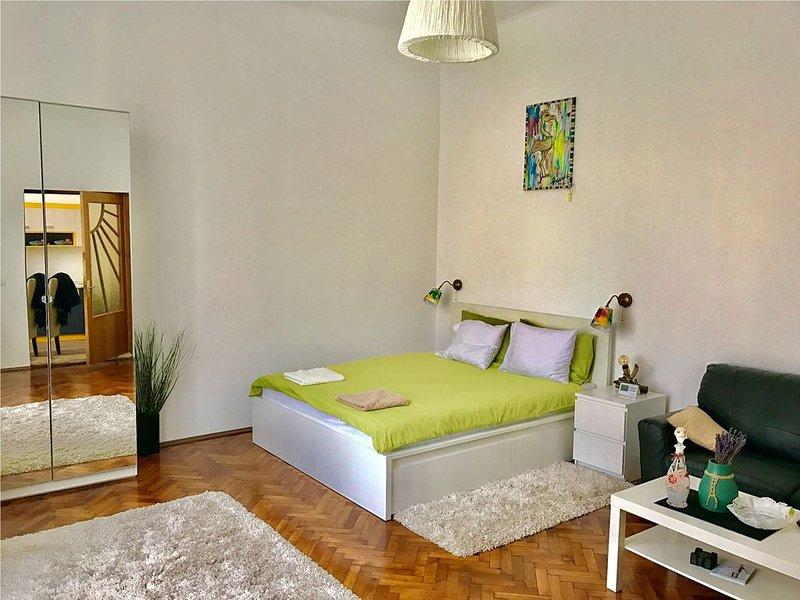 SIBIU CENTRAL STUDIO, holiday rental in Porumbacu de Sus