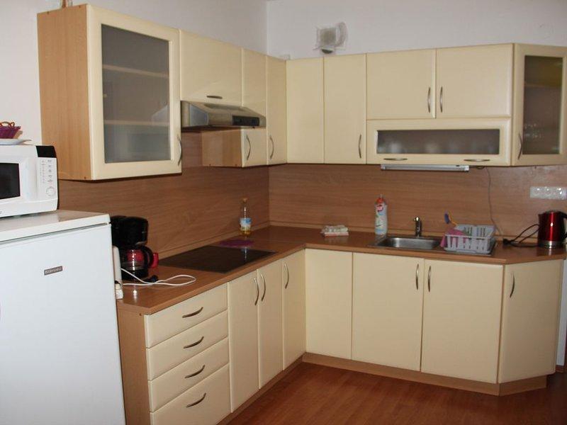 Lilianna 1  bedroom, Karlovy Vary, holiday rental in Ostrov