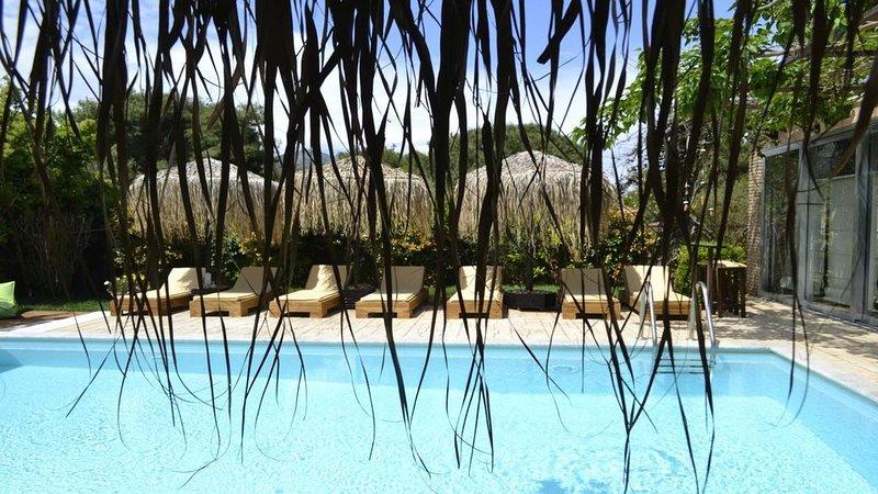 Turdus Merula 2 villas.Your own private resort near Athens & Aegean sea, holiday rental in Marathon