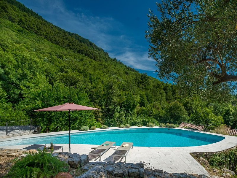 Old Mill House With Private Pool And Garden, holiday rental in Radanovici