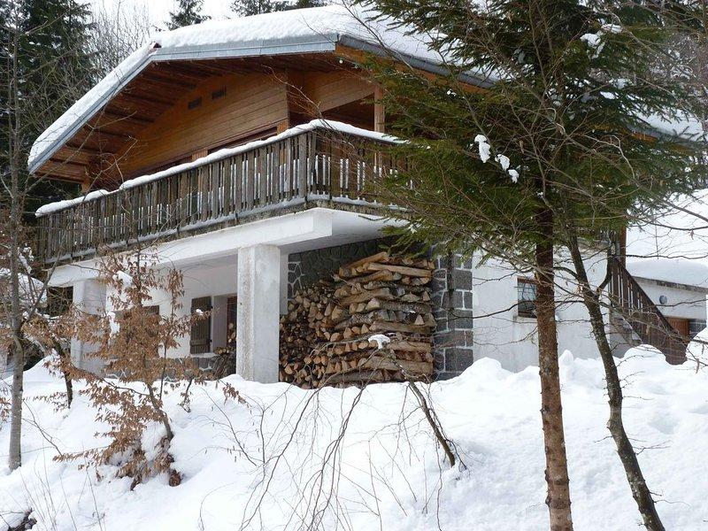 GRAND CHALET 400m PIED DES PISTES, holiday rental in Mittlach