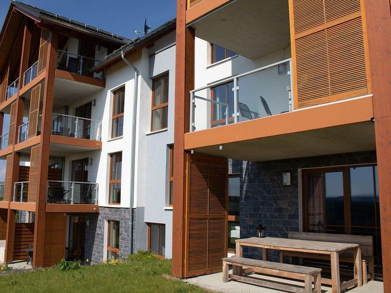 Luxurious apartment in Winterberg-Neuastenberg with private sauna, holiday rental in Langewiese