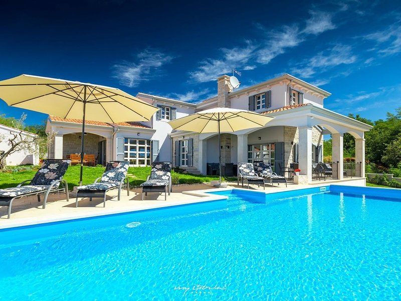 Luxury villa with private pool near Porec, holiday rental in Roskici