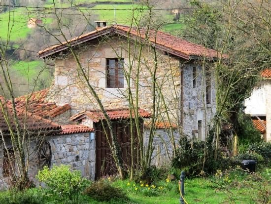 Casa rural con encanto y ecorespetuosa. Patio, jardín, barbacoa y mucha paz, holiday rental in Tineo Municipality