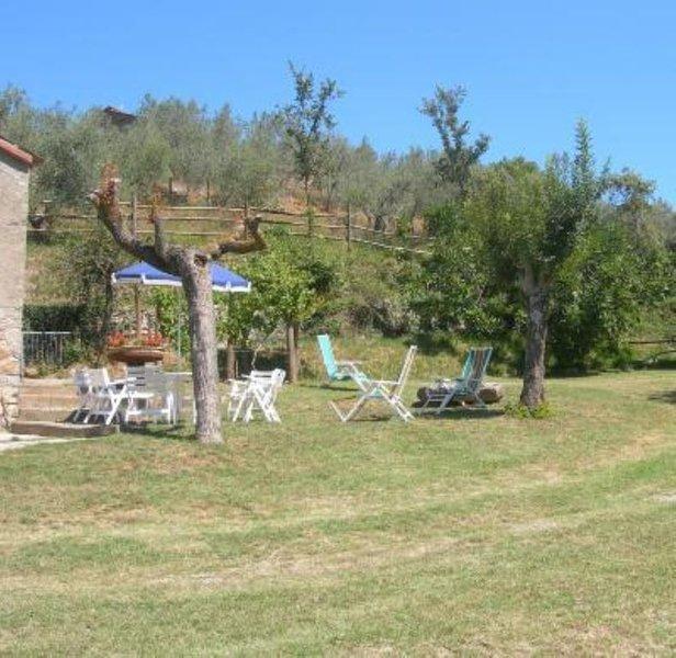 Dimora tipica casale collina Orvieto Umbria giardino privato, holiday rental in Montegiove