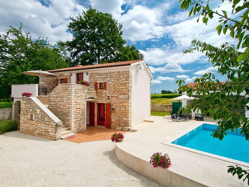 Old restored stone villa with private pool, holiday rental in Zabrezani