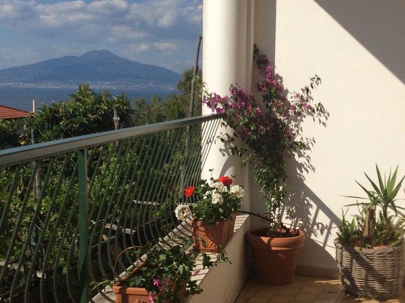 Splendida terrazza sul Golfo di Sorrento – semesterbostad i Sorrento