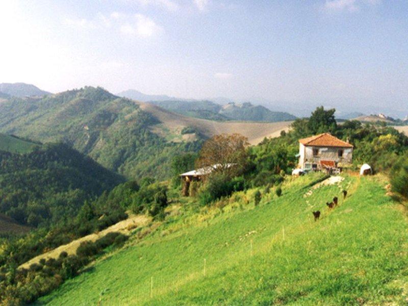 Gastfreundschaft,  Landschaft und Sehenswürdigkeiten werden Sie begeistern, holiday rental in Frontino