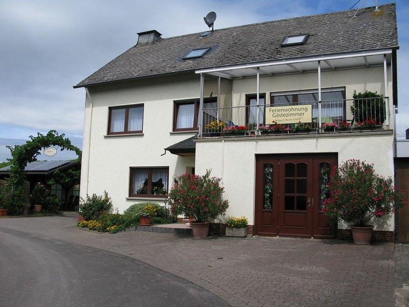 Familienfreundlich, Außenanlage, Wandern, Weinberge, Radfahren, Kinderermäßigung, holiday rental in Dodenburg