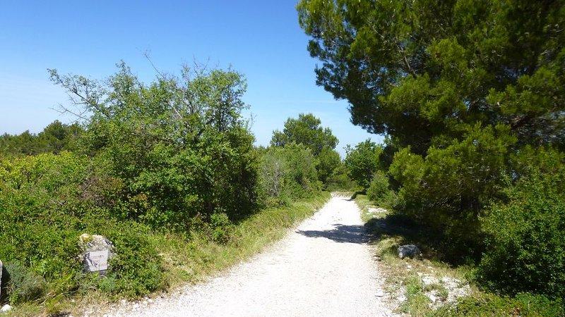 Propriété isolée, vues à 100 Km, parc de 4 hectares, piscine de 17m de long, casa vacanza a Le Beaucet